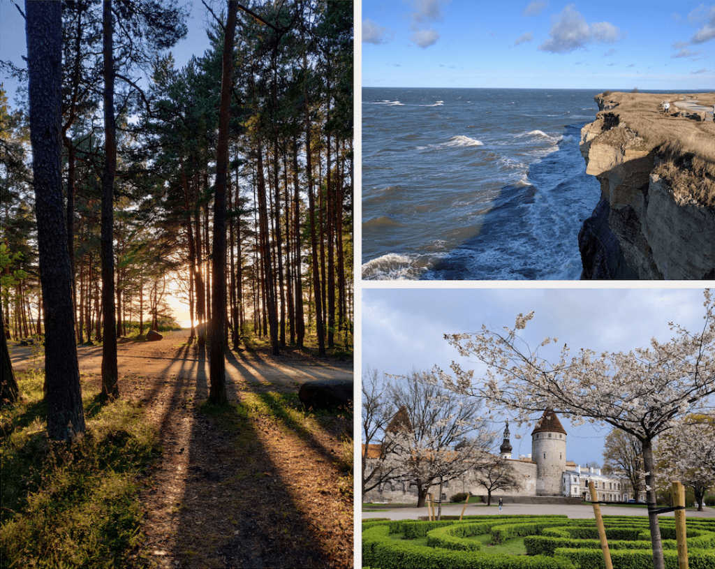 Moving to Estonia for work (nature)
